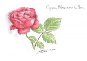 mignonne9,600 mignonne allons voir si la rose
